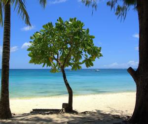 avatar de Le Dominicain
